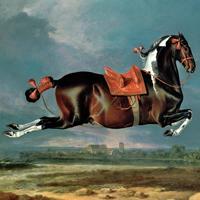 Pferdle_200x200